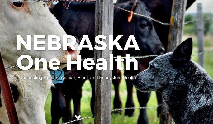 Nebraska One Health Program Merchandise