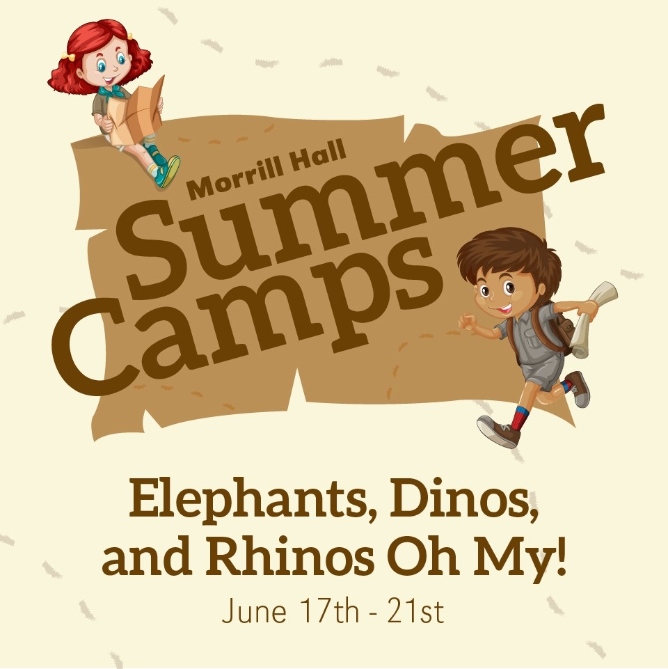 Elephants, Dinos, and Rhinos Oh My!