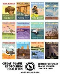 All Twelve Images Postcard