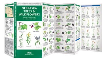 Nebraska Trees & Wildflowers