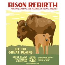 Bison Rebirth Poster