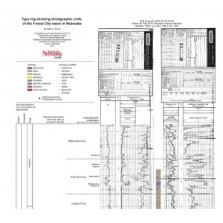 Type log and stratigraphic units of the Forest City basin in Nebraska Correlations and Cross Sections (CCS-19)