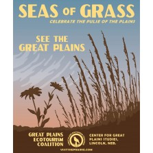 Seas of Grass Poster