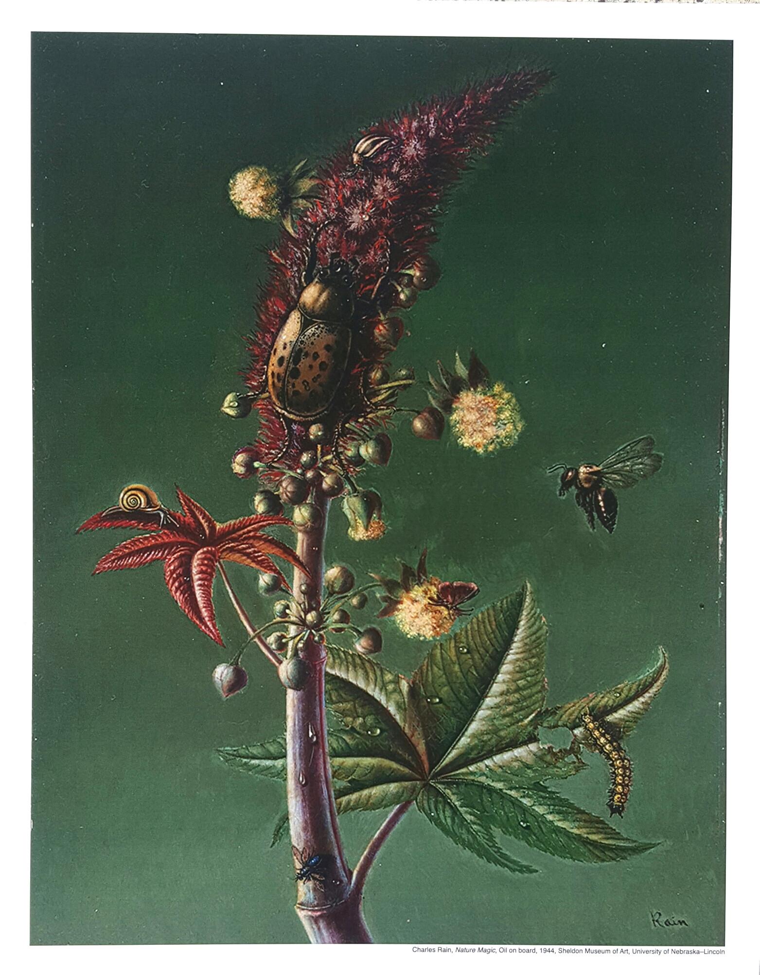 'Nature Magic' mini poster