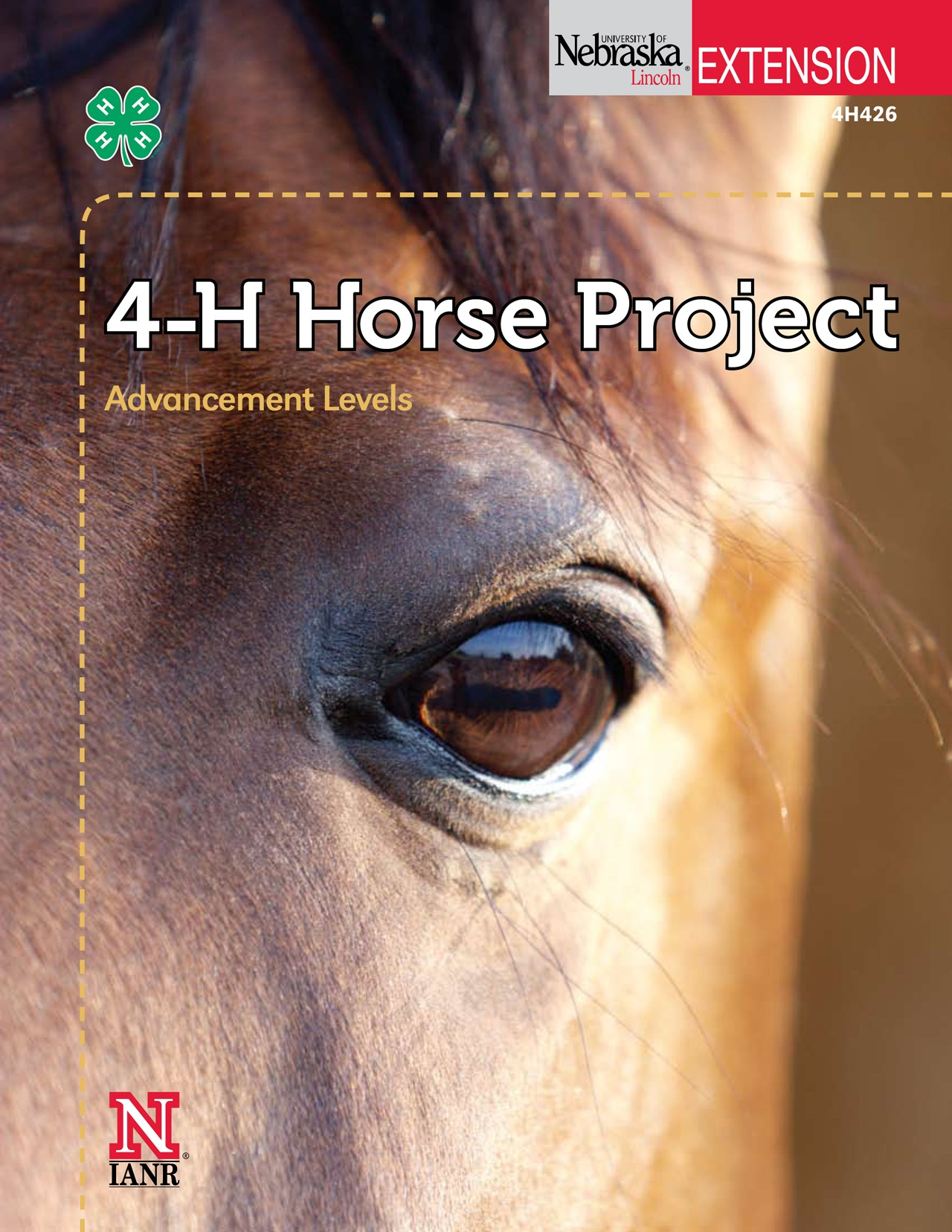 4-H Horse Project Advancement Level