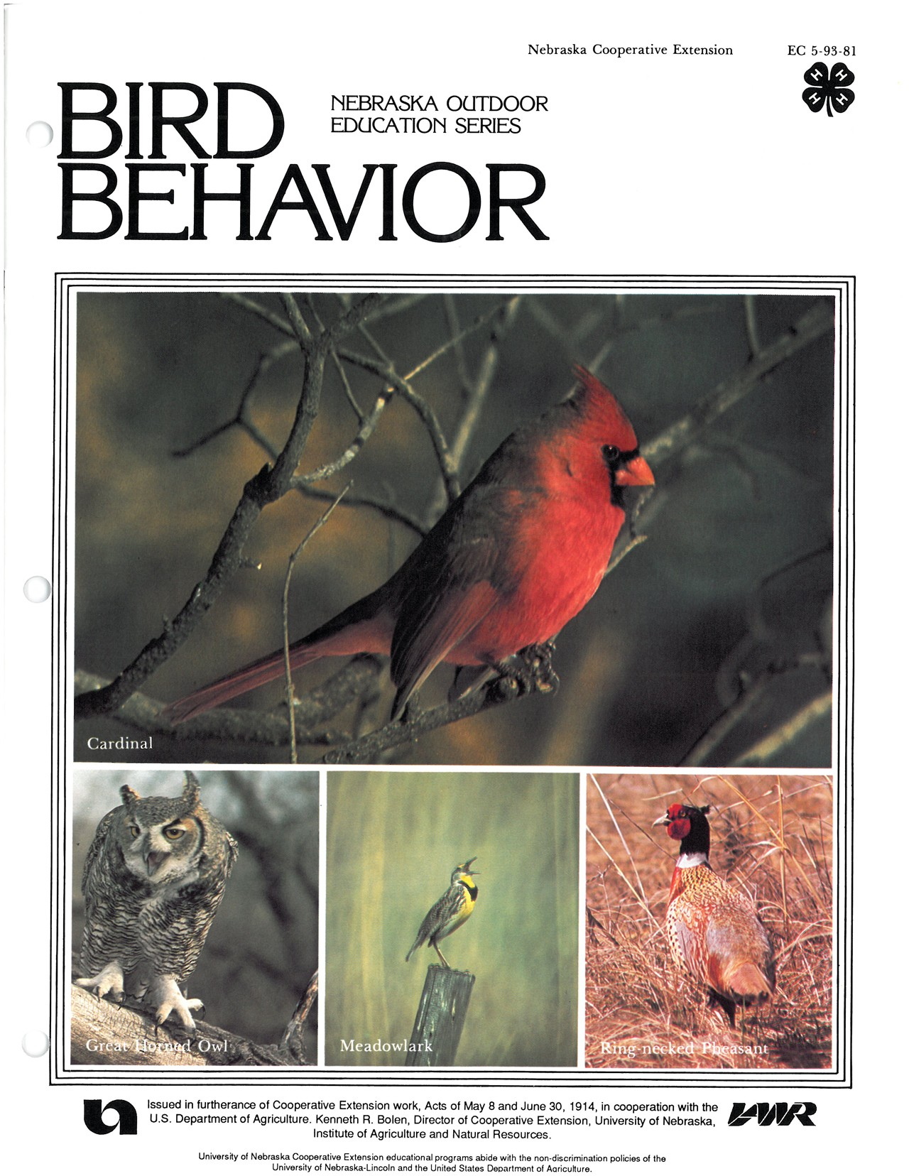 Bird Behavior
