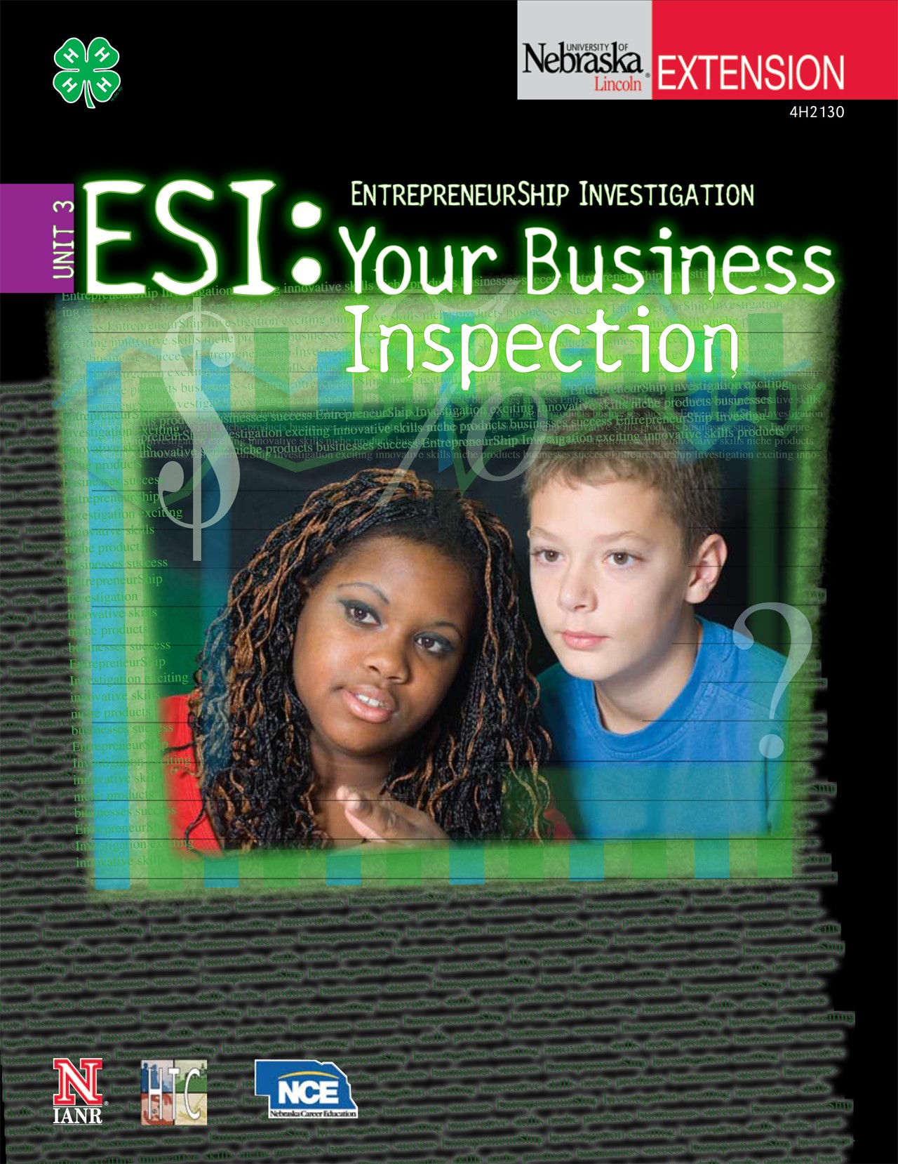 EntrepreneurShip Investigation 3: Your Business Inspection