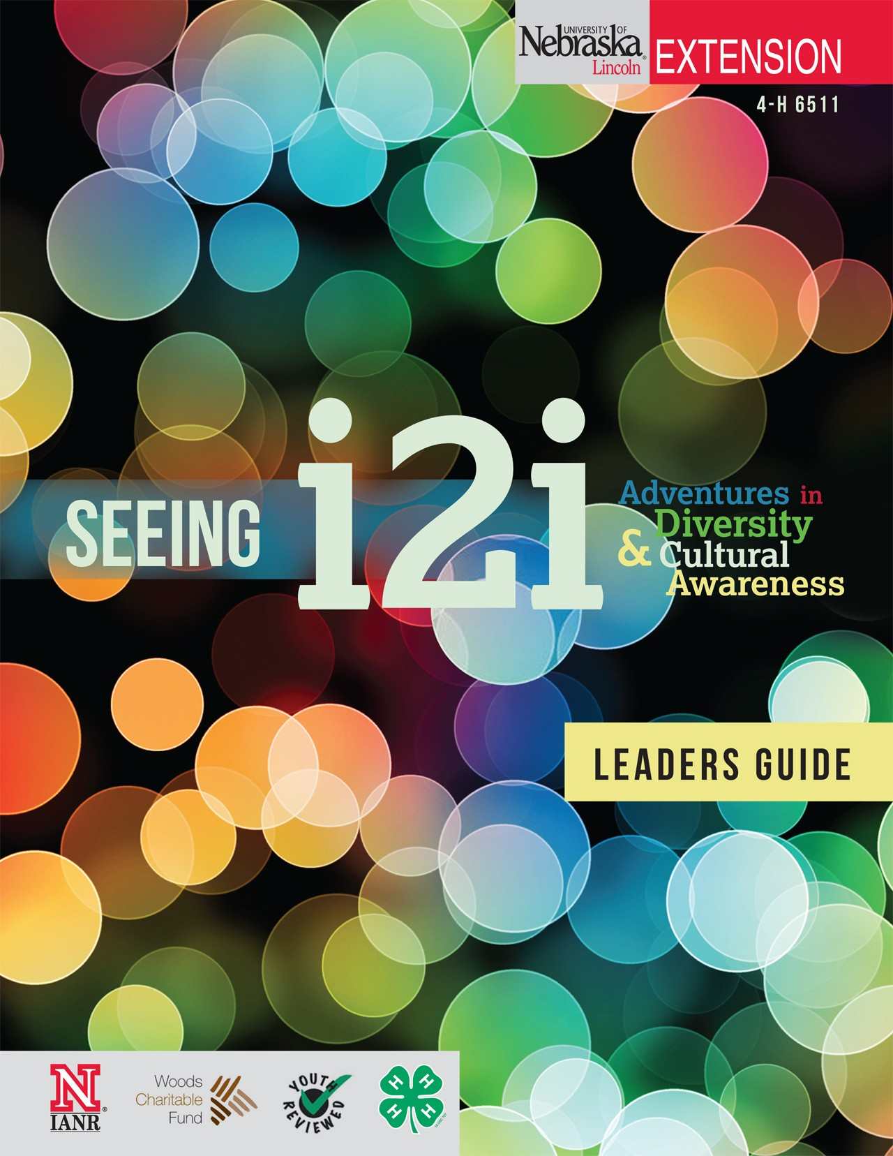 Seeing i2i - Leader's Guide [CD]