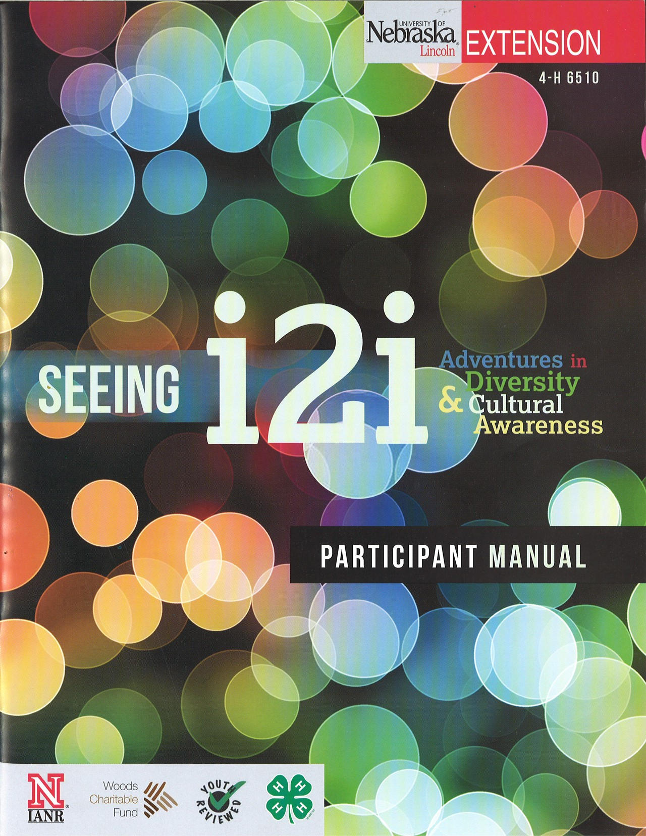 Seeing i2i - Participant's Guide