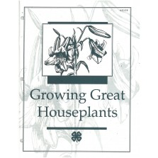 Growing Great Houseplants