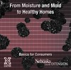 From Moisture and Mold to Healthy Homes - Basics for Consumers