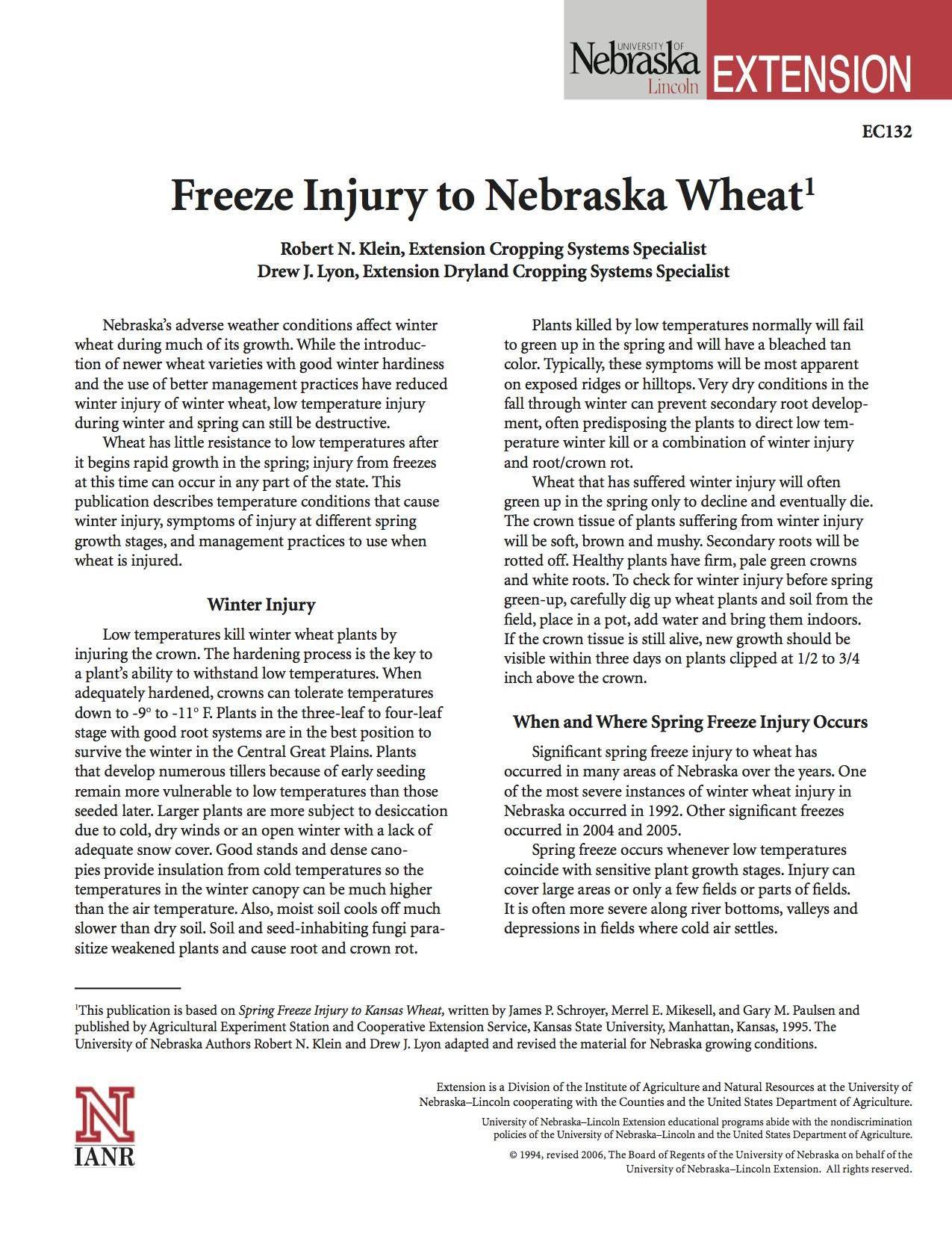 Freeze Injury to Nebraska Wheat