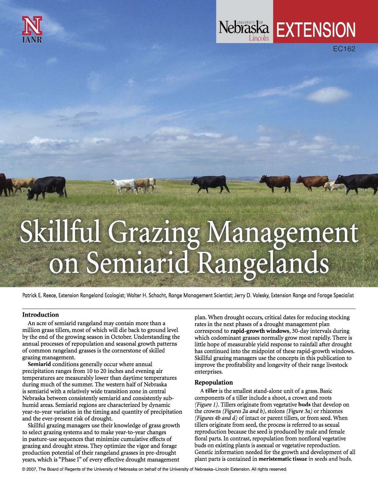 Skillful Grazing Management on Semiarid Rangelands
