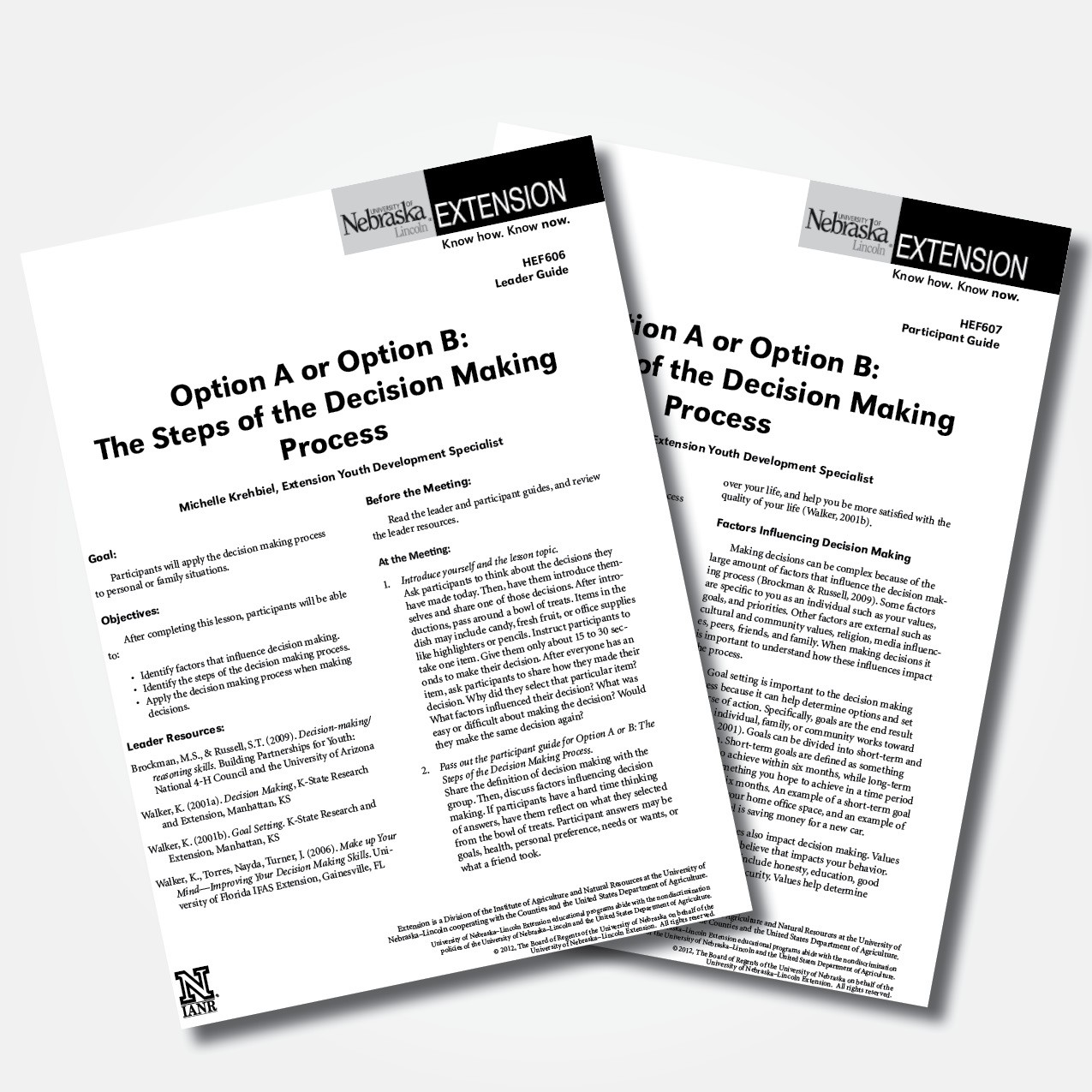 Option A or Option B: The Steps of the Decision Making Process