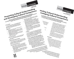 Promoting Cultural Understanding and Developing Cultural Competence