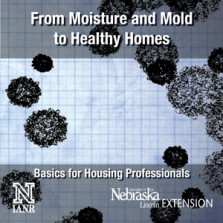 From Moisture and Mold to Healthy Homes - Basics for Housing Professionals