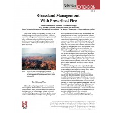 Grassland Management with Prescribed Fire