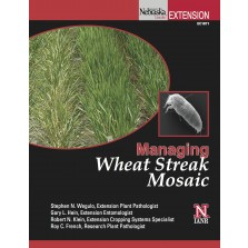 Managing Wheat Streak Mosaic