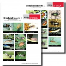 Beneficial Insects Photo Identification Guides