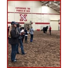 Horse Judging School - Coaches and Teams