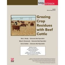 Grazing Crop Residue with Beef Cattle