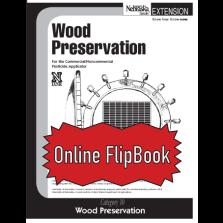 Wood Preservation (10) FlipBook